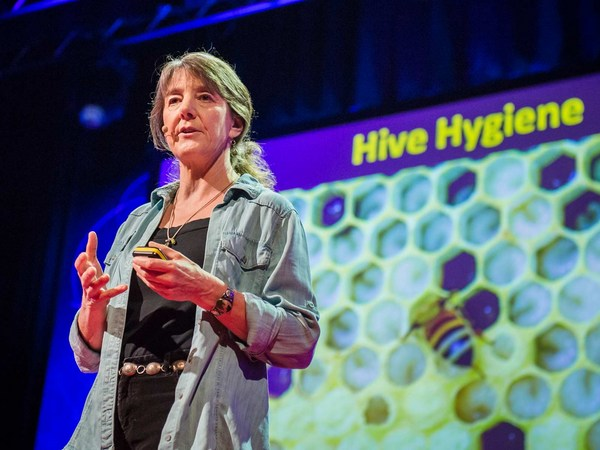 This is a must – watch Ted talk on bees
