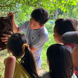 Kids learn about bees